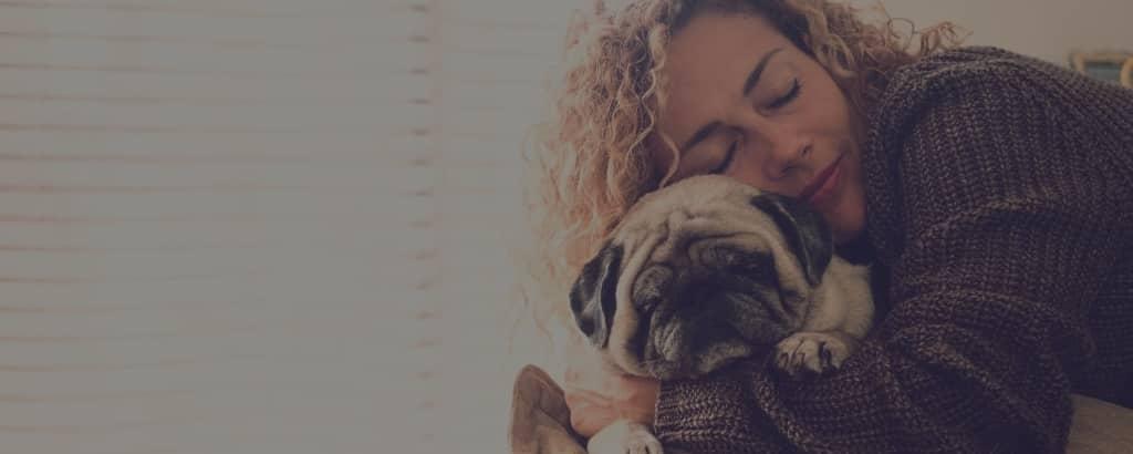 Pugs lifespan